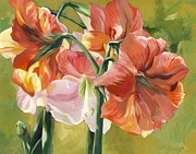 Amaryllis In Spring Print by Alfred Ng