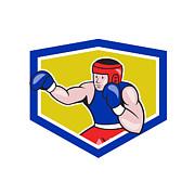 Amateur Boxer Boxing Shield Cartoon Print by Aloysius Patrimonio