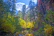Beautiful Creek Mixed Media Prints - Amazing Color Print by Brian Lambert
