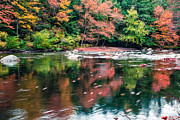 Fall Colors Autumn Colors Posters - Amazing fall foliage along a river in New England Poster by Edward Fielding