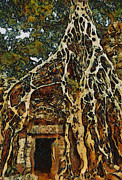 Teara Na Metal Prints - Amazing tree Metal Print by Teara Na