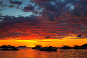 Sabah Posters - Amazing tropical sunset on Kota Kinabalu bay Poster by Fototrav Print