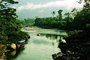 Peru Framed Prints - Amazon River Scene Framed Print by Aidan Moran