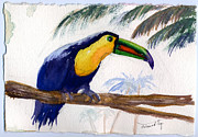 Yellow Beak Painting Metal Prints - Amazonian Metal Print by Mohamed Hirji
