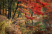 Calming Posters - Amber Autumn Lake Poster by Christina Rollo