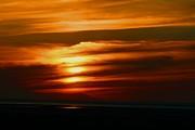 Louis Sarkas - Amber sky