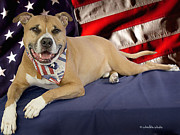 Doggy Cards Prints - America the Beautiful Print by Starlite Studio