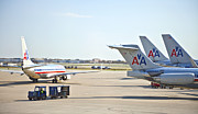 American Airways Prints - American Airlines Print by Liz Leyden