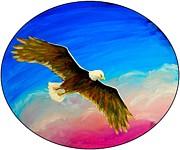 Jim Harris - American Bald Eagle