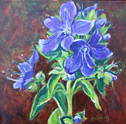 Jan Bennicoff - American Bellflower
