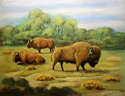 Bison Pastels - American Bison by Richard Nervig