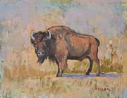 American Bison Print by Sal Vasquez