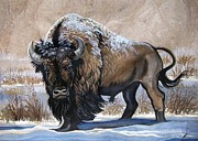 Amate Bark Paper Prints - American Bison Winter Print by Anne Shoemaker-Magdaleno