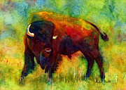 American Buffalo Print by Hailey E Herrera