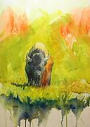 Todd Derr - American Buffalo In Yellowstone