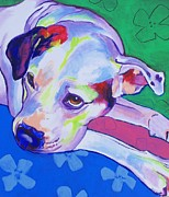 Dawgart Paintings - American Bulldog - Raja by Alicia VanNoy Call