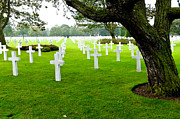 Tammy Abrego - American Cemetery at...