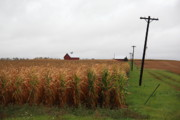 Cornfield Photos - American Cornfield and Farmhouse by Frank Romeo