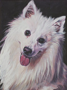Dog Art Paintings - American Eskimo Dog by Lee Ann Shepard