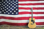 Terry DeLuco - American Flag Guitar