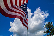 Mick Anderson - American Flag in the Wind