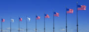 Waving Flag Posters - American Flags on Chicagos famous Navy Pier Poster by Christine Till