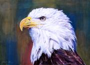 Birds Of Prey Paintings - American Guardian by David Lloyd Glover