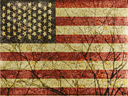 4th July Digital Art Posters - American Roots Poster by Daniel Ferreira-Leites