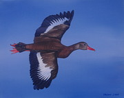 Waterfowl Paintings - American Whistler by Michael Allen