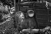 Time Gone By Photos - Americana - Old Truck by Brent Davis