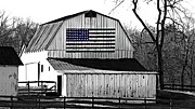 Amish Farms Prints - Americana Print by Trish Clark