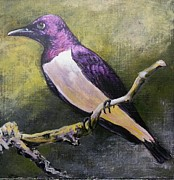 Starlings Paintings - Amethyst Starling by Karen Bradley