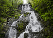 Rock Spring Trail Prints - Amicalola Falls Print by Debra and Dave Vanderlaan