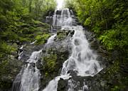 Debra and Dave Vanderlaan - Amicalola Falls