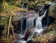 Anna Rumiantseva - Amicalola Waterfall