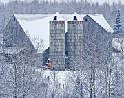 Amish Barn Print by Jack Zievis
