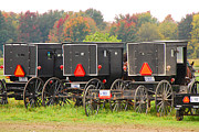 Indiana Autumn Prints - Amish Buggies 2 Print by Mary Carol Story