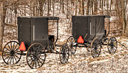 Horse And Buggies Prints - Amish Buggies Print by Joe Granita