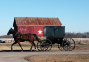 Horse And Buggy Posters - Amish Buggy and Star Barn Poster by David Arment