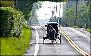 Amish Digital Art Prints - Amish Buggy in Lancaster County Pa. Print by Bill Cannon