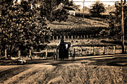 Amish Prints - Amish Buggy on a Country Road Print by Bill Cannon