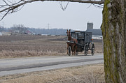 Rural Indiana Posters - Amish Buggy Winter 2013 Poster by David Arment