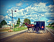 Horse And Buggy Prints - Amish Country Buggy Print by Joan  Minchak