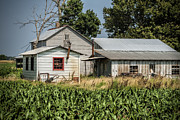Amish Community Prints - Amish Farm in Tennessee Print by Kathy Clark