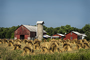 Amish Community Prints - Amish Farm Wheat Stack Harvest Print by Kathy Clark