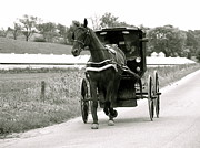 Horse And Buggy Posters - Amish Green Car Poster by Ken Caldwell