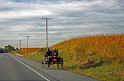 Horse And Buggy Framed Prints - Amish Highways Framed Print by Skip Willits