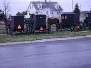 Horse And Buggies Prints - Amish Ride Print by R A W M