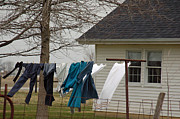 Amish Photo Prints - Amish Washday - Allen County Indiana Print by Suzanne Gaff