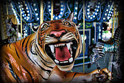 Jumper Photo Framed Prints - Amusement Ride - The Carousel Tiger II Framed Print by Lee Dos Santos